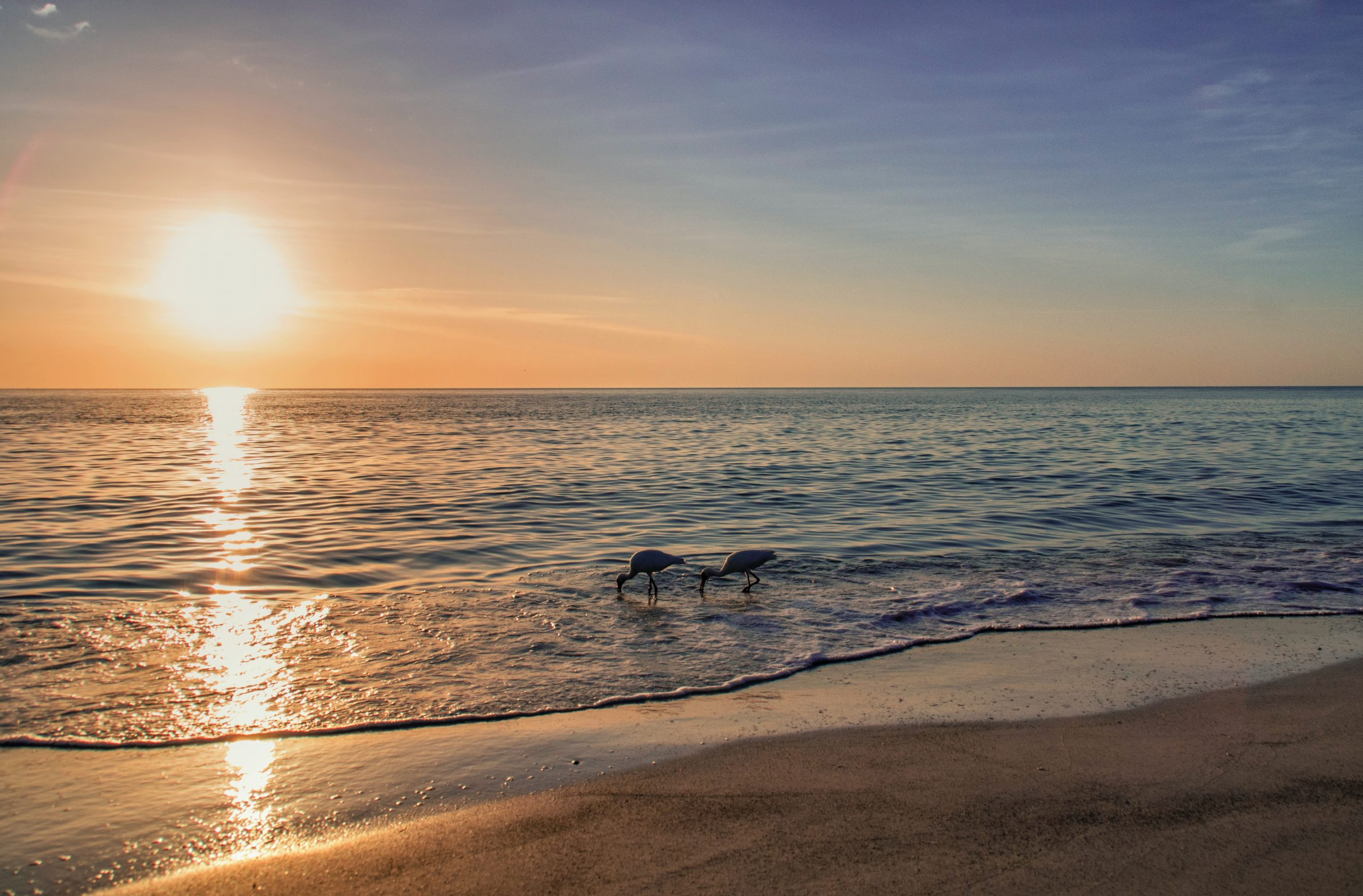 שקיעת השמש בחוף הים