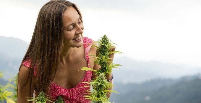 אישה מריחה צמח קנאביס